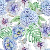 Teste padrão sem emenda com flores Monstera anemone pansies Hudrangeya Ilustração da aguarela Imagens de Stock