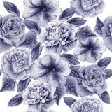Teste padrão sem emenda com flores Peônia Rosa petunia Ilustração da aguarela Foto de Stock Royalty Free