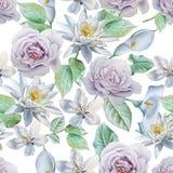 Teste padrão sem emenda com flores Rosa Lírio Ilustração da aguarela Imagens de Stock Royalty Free