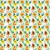 Teste padrão sem emenda com flores selvagens Foto de Stock Royalty Free