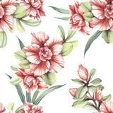 Teste padrão sem emenda com flores tropicais Ilustração da aguarela Imagens de Stock