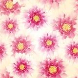 Teste padrão sem emenda com flores Vetor, EPS 10 Fotos de Stock Royalty Free