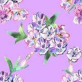 Teste padrão sem emenda com flores watercolor ilustração do vetor