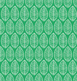 Teste padrão sem emenda com folhas Fotografia de Stock