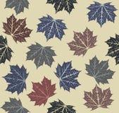 Teste padrão sem emenda com folhas de outono Fotos de Stock