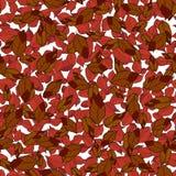Teste padrão sem emenda com folhas de outono Vetor EPS 10 Foto de Stock