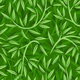 Teste padrão sem emenda com folhas do salgueiro. Fotografia de Stock