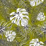 Teste padrão sem emenda com folhas exóticas Imagens de Stock