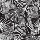 Teste padrão sem emenda com folhas exóticas Fotos de Stock