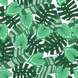 Teste padrão sem emenda com folhas tropicais ilustração do vetor