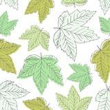 Teste padrão sem emenda com folhas verdes ilustração royalty free