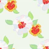 Teste padrão sem emenda com hibiscus-05 Fotos de Stock