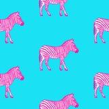 Teste padrão sem emenda com ilustração tirada mão do vetor da zebra Foto de Stock Royalty Free