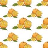 Teste padrão sem emenda com laranjas ilustração royalty free