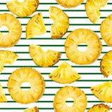 Teste padrão sem emenda com o abacaxi na listra verde Imagem de Stock Royalty Free