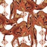 Teste padrão sem emenda com o camelo decorado com ornamento orientais e o ornamento floral colorido de Egito Imagens de Stock