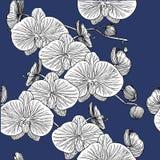 Teste padrão sem emenda com orquídeas Mão desenhada ilustração stock