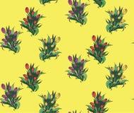 Teste padrão sem emenda com os bouquettes diferentes das tulipas Fotografia de Stock Royalty Free