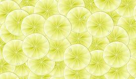 Teste padrão sem emenda com os limões verde-amarelos cortados ilustração do vetor