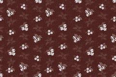Teste padrão sem emenda com os ramalhetes das flores brancas Fotografia de Stock Royalty Free