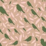 Teste padrão sem emenda com pássaros e penas silhuetas coloridas dos pássaros e do feath Fotos de Stock Royalty Free