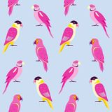 Teste padrão sem emenda com papagaios coloridos Imagens de Stock Royalty Free