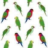 Teste padrão sem emenda com papagaios coloridos Fotografia de Stock Royalty Free