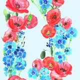 Teste padrão sem emenda com papoilas e centáureas watercolor ilustração do vetor