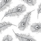 Teste padrão sem emenda com penas do pavão ilustração stock