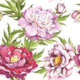 Teste padrão sem emenda com peonies Ilustração da aquarela da tração da mão Imagens de Stock Royalty Free