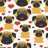 Teste padrão sem emenda com pugs Foto de Stock Royalty Free