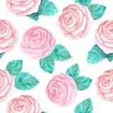 Teste padrão sem emenda com rosas cor-de-rosa Fotografia de Stock