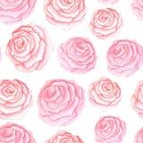 Teste padrão sem emenda com rosas cor-de-rosa ilustração stock