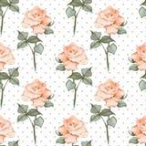 Teste padrão sem emenda com rosas da aguarela Às bolinhas Fundo 05 Imagens de Stock Royalty Free