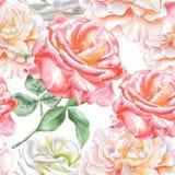 Teste padrão sem emenda com rosas da aguarela Fotografia de Stock