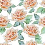 Teste padrão sem emenda com rosas da aguarela Imagens de Stock Royalty Free