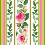 Teste padrão sem emenda com rosas e listras Imagem de Stock Royalty Free