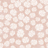 Teste padrão sem emenda com tema floral bege Fotografia de Stock