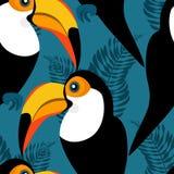 Teste padrão sem emenda com tucanos e as folhas tropicais ilustração stock
