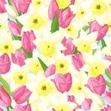 Teste padrão sem emenda com tulipas e narcisos amarelos fotografia de stock royalty free