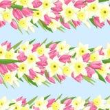 Teste padrão sem emenda com tulipas e narcisos amarelos foto de stock royalty free
