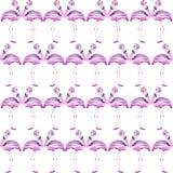 Teste padrão sem emenda com um flamingo Imagem de Stock Royalty Free