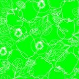 Teste padrão sem emenda com vegetais do contorno Foto de Stock Royalty Free