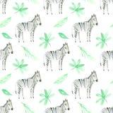 Teste padrão sem emenda com zebra e folha ilustração royalty free