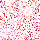 Teste padrão sem emenda cor-de-rosa floral macio Foto de Stock