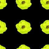 teste padrão sem emenda da aquarela amarela da anêmona Fotos de Stock Royalty Free