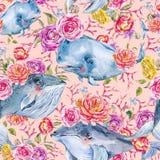 Teste padrão sem emenda da aquarela da baleia azul com rosa, anêmonas, flores do verão Papel digital náutico ilustração royalty free