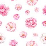 Teste padrão sem emenda da aquarela com as flores cor-de-rosa da peônia Fotos de Stock