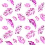 Teste padrão sem emenda da aquarela com as folhas cor-de-rosa da palmeira no branco ilustração royalty free