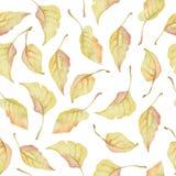 Teste padrão sem emenda da aquarela com as folhas do ouro do outono imagem de stock royalty free